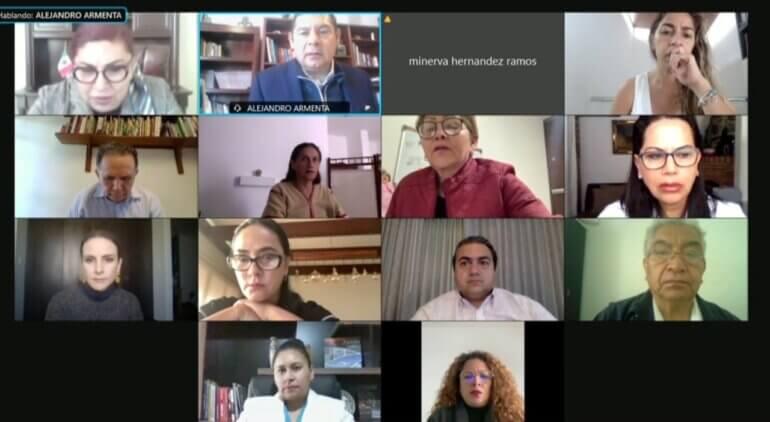 Sesión virtual Senado
